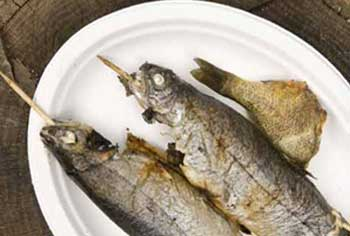 fish is beneficial for children