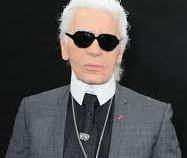lagerfeld-diginer-hollywood-25012014