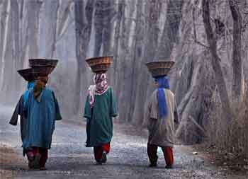 Srinagar sees coldest day at minus 5.6 degrees