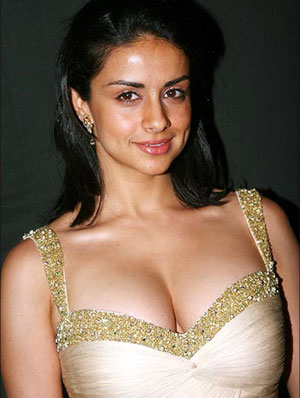 gul panag get married