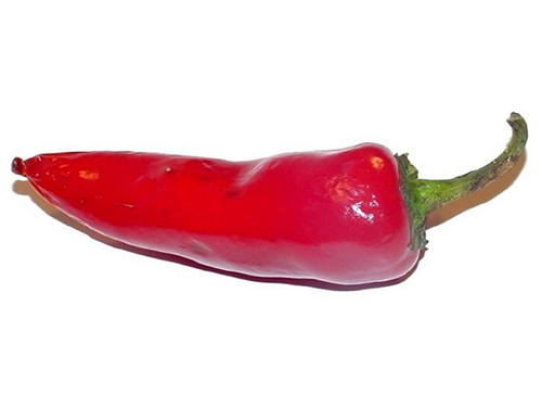 new-researchre-about-red-chilli